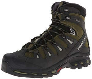 Salomon Men's Quest 4D 2 GTX Hiking Boot-1