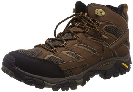 Merrell Men's Moab 2 mid Gtx Hiking Boot (Top Pick)