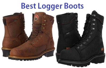 Top 15 Best Logger Boots Reviews in 2019