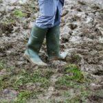 Top 10 Dunlop Work Boots - Detailed Reviews 2020